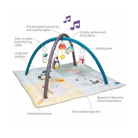 Imagine 3Centru de joaca muzical Polul Nord Taf Toys