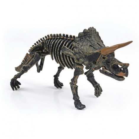 Imagine 2Kit paleontologie - Descopera dinozaurul
