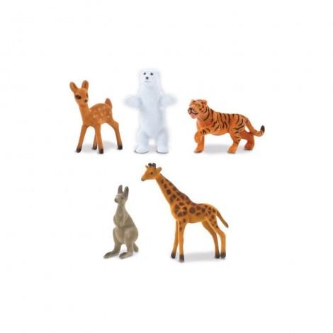 Imagine 3Covoras cu activitati Habitatele Animalelor