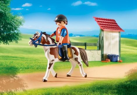 Imagine 2Statie de ingrijire cai