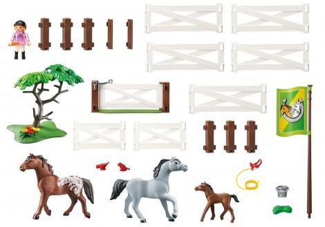Imagine 2Tarcul cailor