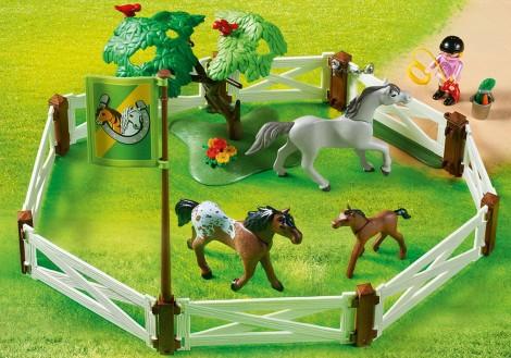 Imagine 3Tarcul cailor