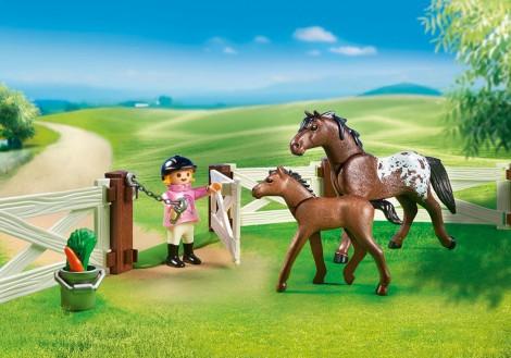Imagine 4Tarcul cailor