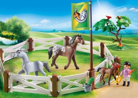Imagine 5Tarcul cailor