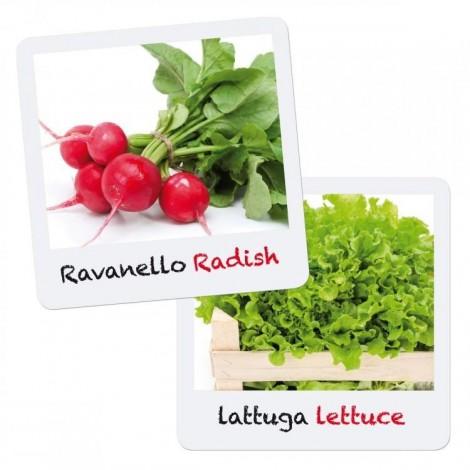 Imagine 3Joc Micul Gradinar Cultiva Salata si Ridichi