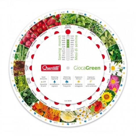 Imagine 4Joc Micul Gradinar Cultiva Salata si Ridichi